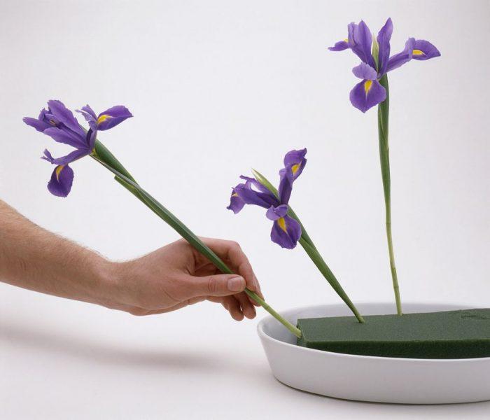 gąbka florystyczna - jak jej używać?