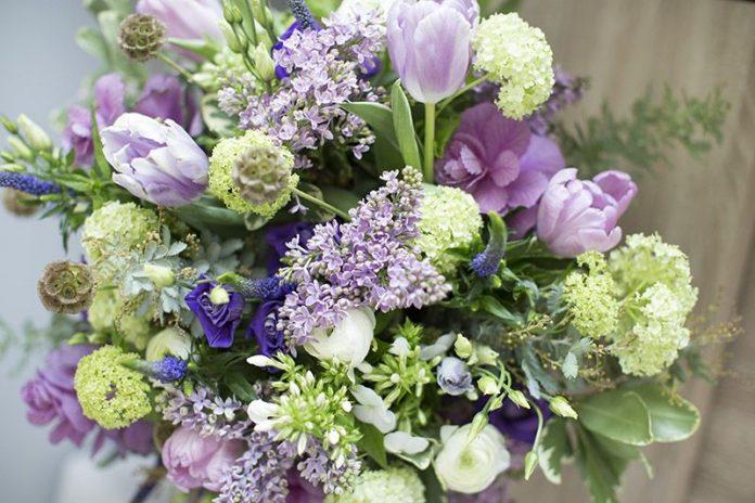 Kwiaty DVFlora
