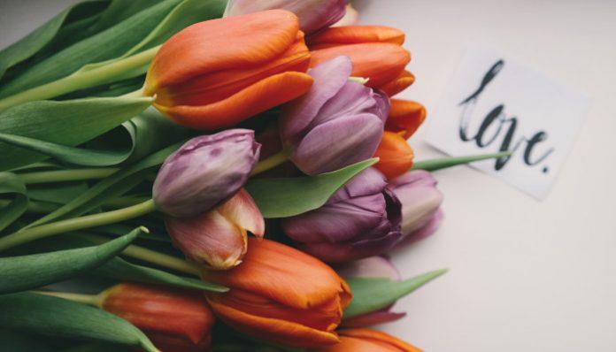 Jak przygotować kwiaciarnię na Dzień Kobiet?