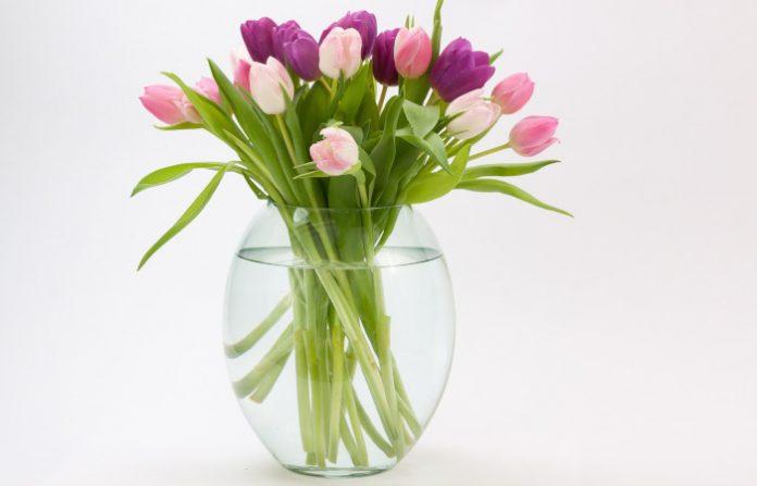 jak wyczyścić wazon