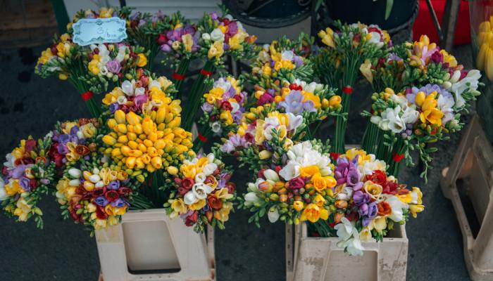Jakie Kwiaty Wybrac Na Dzien Kobiet Portal Florystyczny