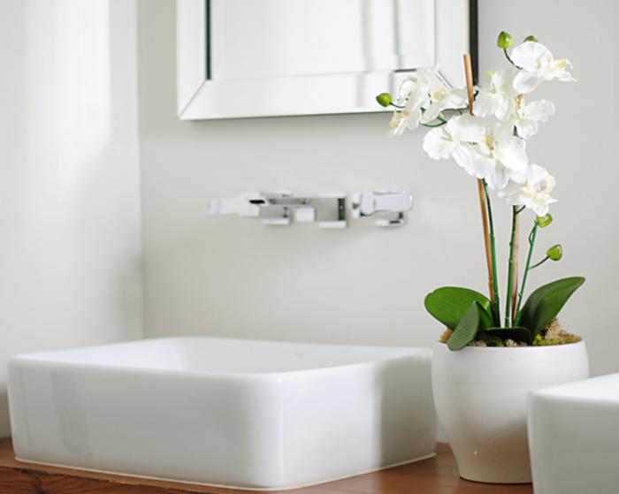 Jakie Kwiaty Wybrać Do łazienki Dowiesz Się Tutaj Portal