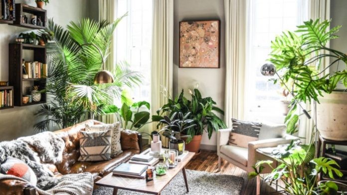 Trend Miejska dżungla - tropikalny las we wnętrzu Twojego mieszkania