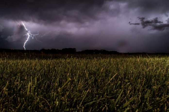 burza