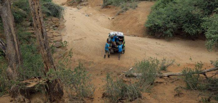 Greenlife Rhino Charge