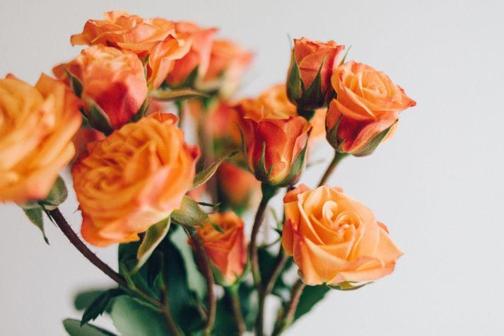 Znaczenie Kwiatów Co Oznacza Róża Portal Florystyczny