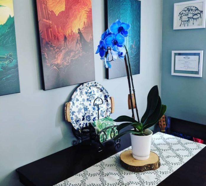 niebieski storczyk