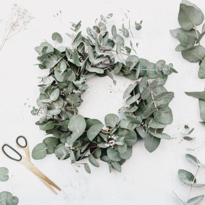 Eukaliptus we florystyce